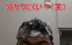 プレミアムブラックシャンプーで頭を洗う画像