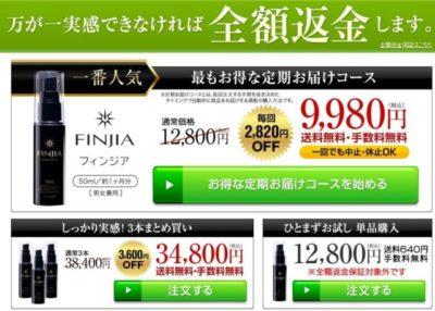 フィンジア公式サイトでの料金の画像