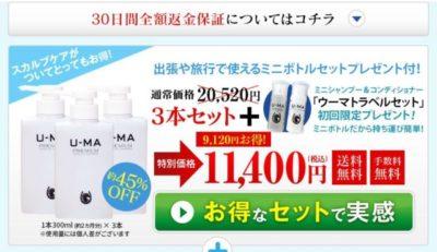 ウーマシャンプー公式サイトでの3本セットの価格の画像