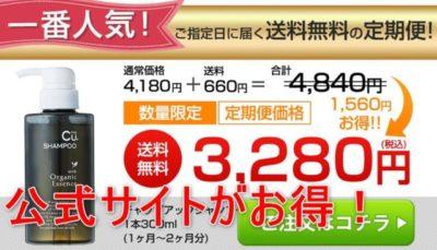 チャップアップシャンプー公式サイトの価格の画像