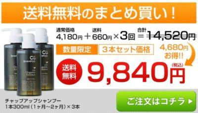 チャップアップシャンプー3本セット購入の価格の画像