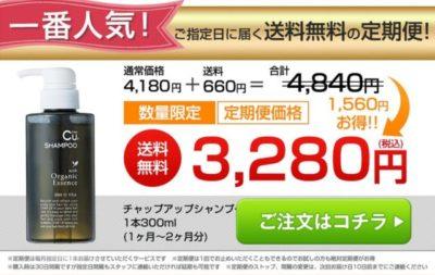 チャップアップシャンプー公式サイトでの定期購入の価格の画像
