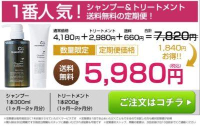 チャップアップシャンプー&トリートメントの公式サイトでの価格の画像