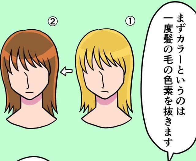 髪の毛が染まるメカニズム