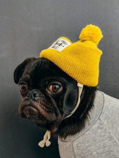ニット帽やヘルメットをかぶると禿げる理由と薄毛を防止する正しい帽子の選び方!!