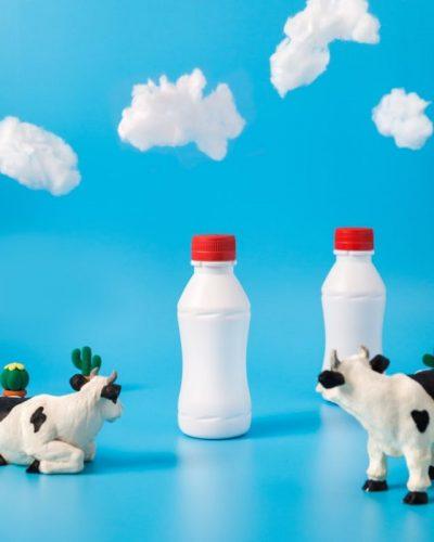 乳製品のイメージ画像