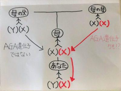 染色体の遺伝図を表したイラスト