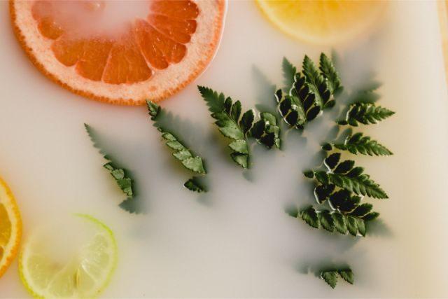 野菜とオレンジ